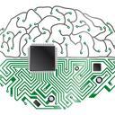 braincircuit  copy